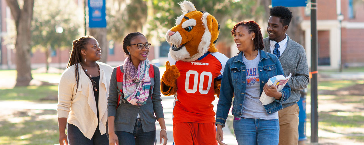 A photo of students walking with the SSU tiger mascot